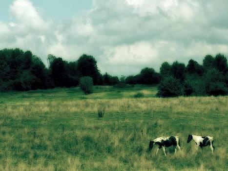 Gothicolors Donna Snyder - Horses In Retro