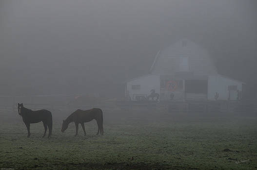 Mick Anderson - Horses in the Fog