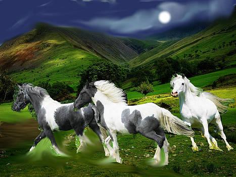 Horses by John Morris
