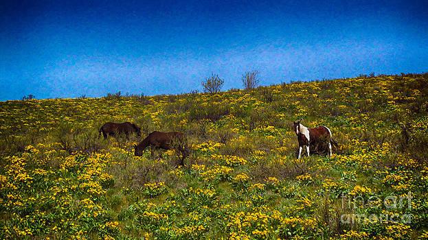 Omaste Witkowski - Horses on a Hillside Landscape Art by Omaste Witkowski