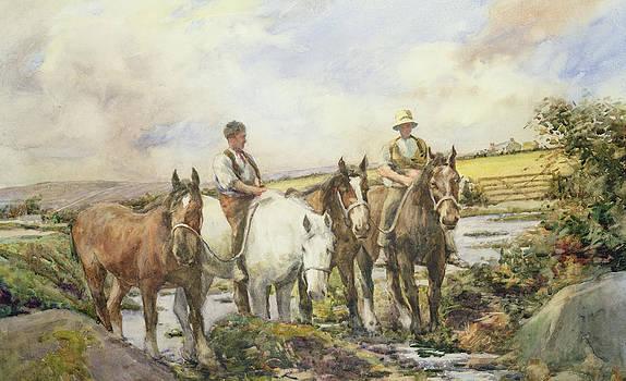 Henry Meynell Rheam - Horses Watering