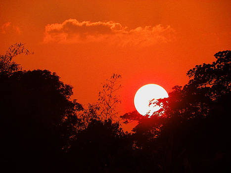 Hot Sun by Nandan NAGWEKAR