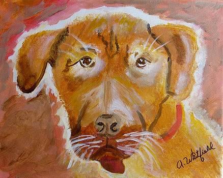Hound Dog by Ann Whitfield