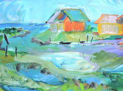 Inlet at Salt Ponds  by Brenda Ruark
