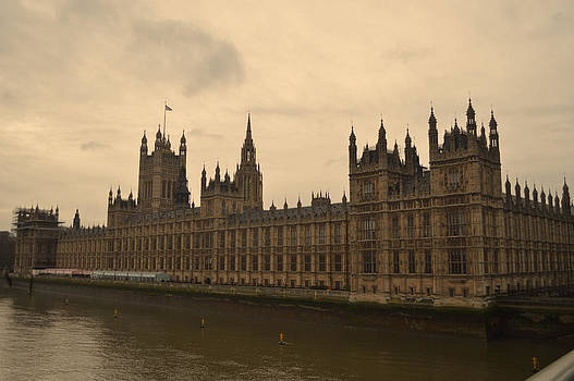 Houses of Parliament by Alexander Mandelstam