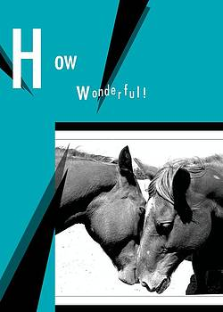 How Wonderful by Amy G Taylor