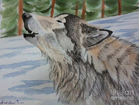Howling Wolf in Winter by Brenda Brown