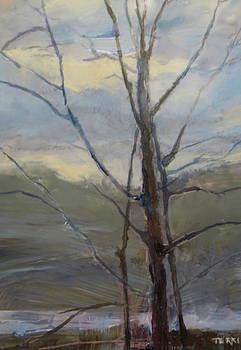 Hudson River near Warrensburg by Terri Messinger