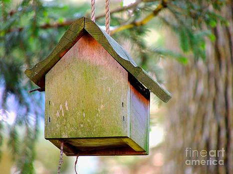 Humble Home by Pamela Rivera