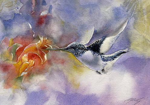 Alfred Ng - humming bird in flight