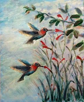 Hummingbirds by Laila Awad Jamaleldin