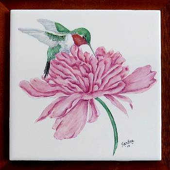 Hummingbird and Peony by Sandra Maddox