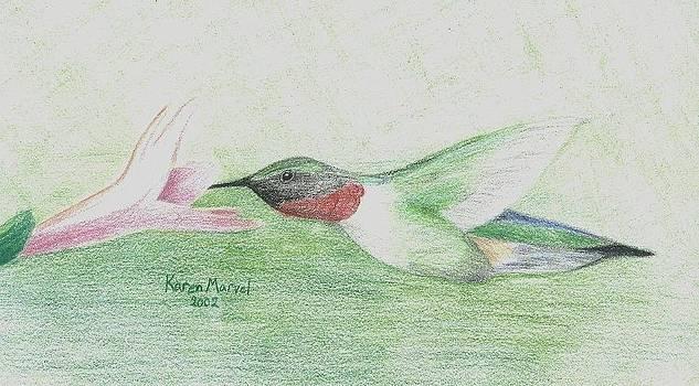 Hummingbird by Karen E Marvel