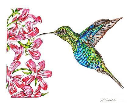 Hummingbird with Flowers by Karen Sirard