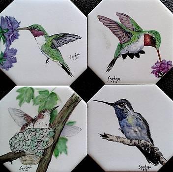 Hummingbirds on Coasters by Sandra Maddox