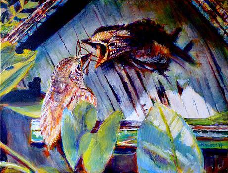 Hungry Bird by Michael Gaudet