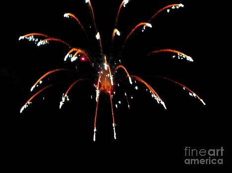 Huron Ohio Fireworks 11 by Jackie Bodnar