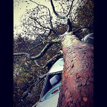 #hurricane #sandy #eastcoast #queens by Shawn Who