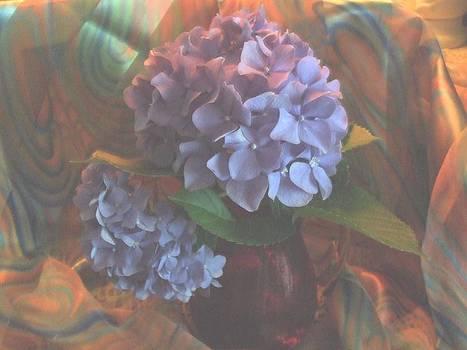 Hydrangea 1 by Teri  Haley