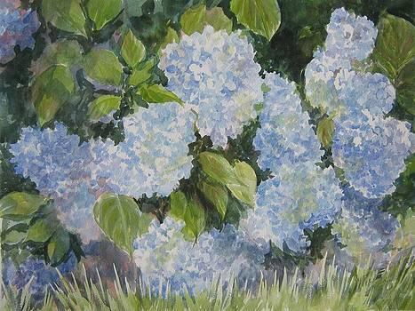 Hydrangea III SOLD by Gloria Turner
