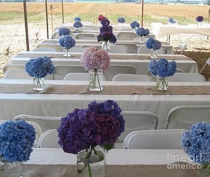 Hydrangeas A Plenty by Donna Cavender