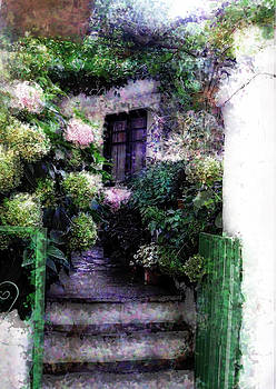 Hydrangeas in Rhodes by Judy Paleologos