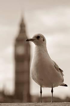 Stefan Kuhn - I am a Londener