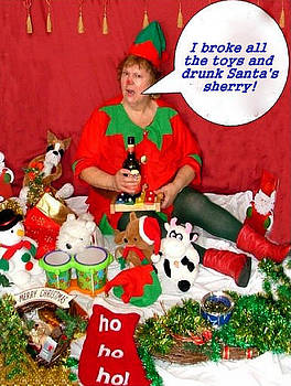 I Broke The Toys by Sandy Wager