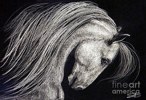 I Dreamed I was a White Horse by Elizabeth  Berg