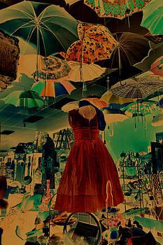 Cindy Nunn - I Dreamed of Umbrellas
