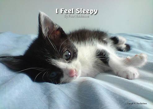 I Feel Sleepy by I Attract Good
