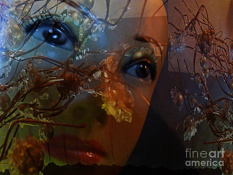 I feel the autumn by Eva-Maria Di Bella