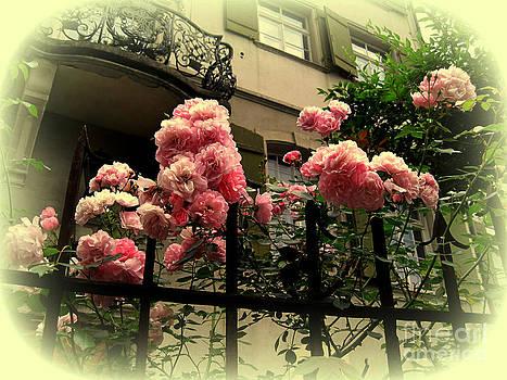 Susanne Van Hulst - I never promised you a rose garden