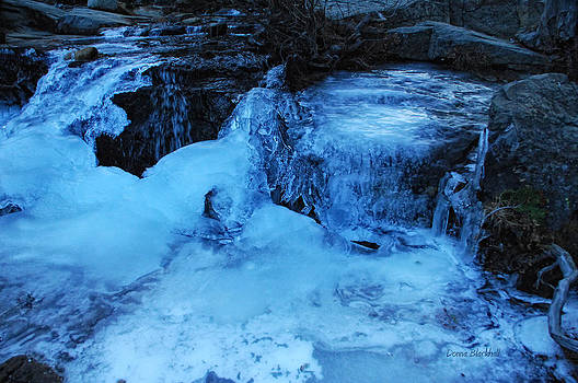 Donna Blackhall - Ice Age Begins