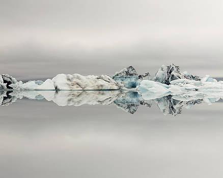 Ice Age by Irene Suchocki