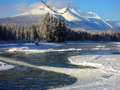 Stanza Widen - Ice Curves