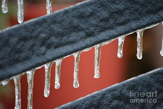 Ice by Gale Cochran-Smith