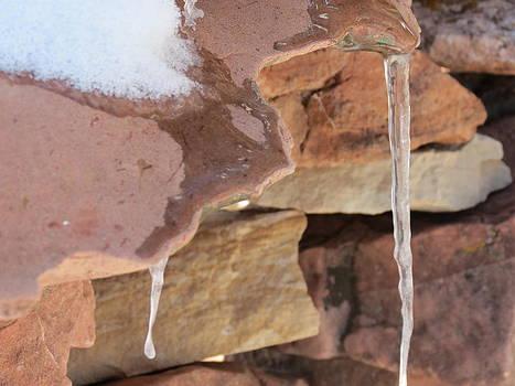 Ice Ice Baby by Karen Mary Castranova