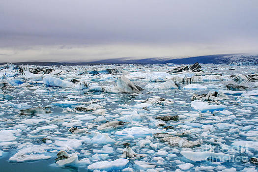 Patricia Hofmeester - Iceberg lake