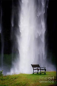 Iceland Waterfall by Arie Arik Chen
