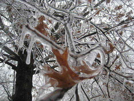 Icy Beckoning by Melissa McCrann