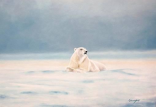 Icy fields by Jean Yves Crispo