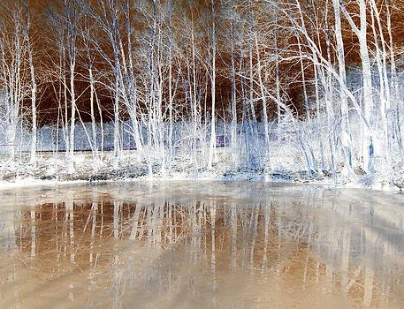Icy Reflections by The Creative Minds Art and Photography