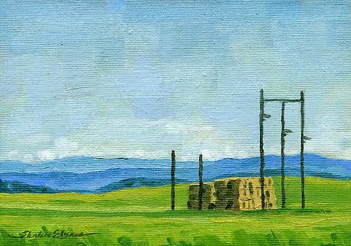 Idaho Haystacks by Shalece Elynne