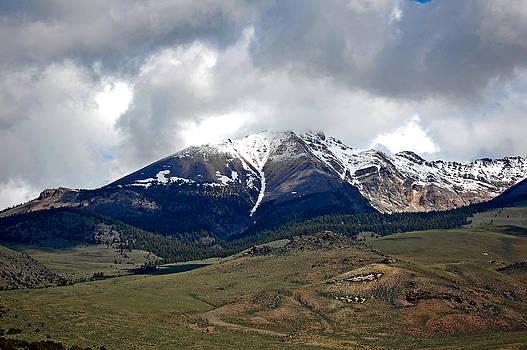 Idaho's glory by Randall Templeton