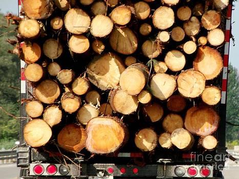 Gail Matthews - If a Woodchuck could chuck wood