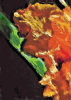 Il Mio Affetto Arancione by Lisa Holland-Gillem