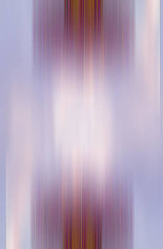Anne Cameron Cutri - Illuminated