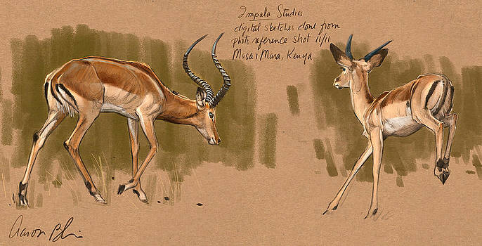 Impala Studdies by Aaron Blaise