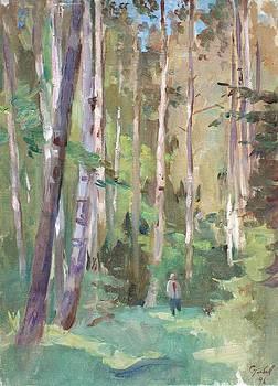 In a birchwood by Alexander Stolbov